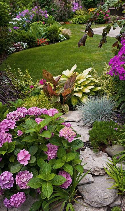 Bluewater Outdoor Services Landscaping
