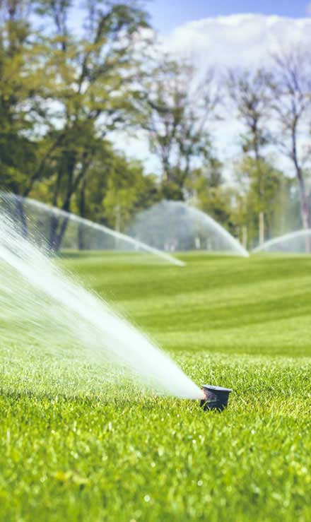 Bluewater Outdoor Services Sprinkler Installation